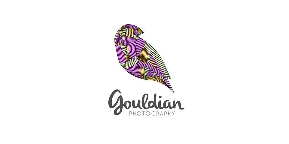 Gouldian Colours Production
