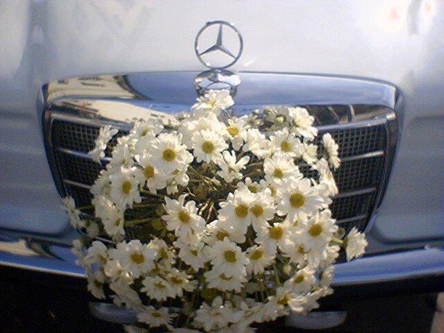 Naga Wedding Car
