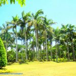 Naga City Ecology Park