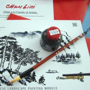Chinese brush and chinese ink