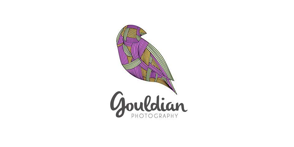 Gouldian Colours Production