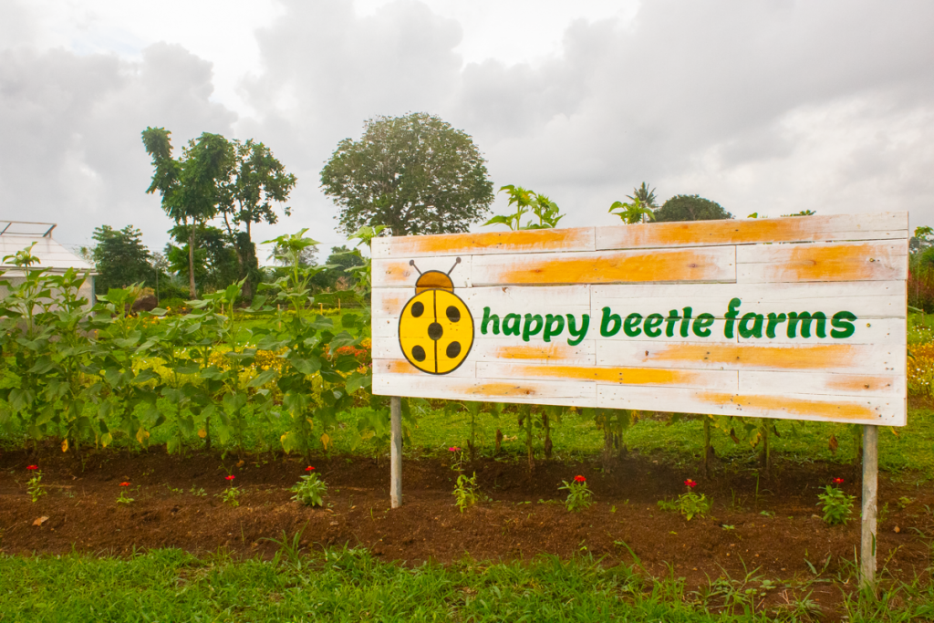 Cafe RoSa & Happy Beetle Farms: The Newest Agritourism Farm in Bicol